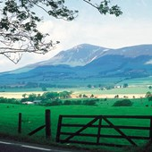 Walk or Cycle | Tinto Hill Walking Route