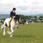 Scottish Equestrian Centre